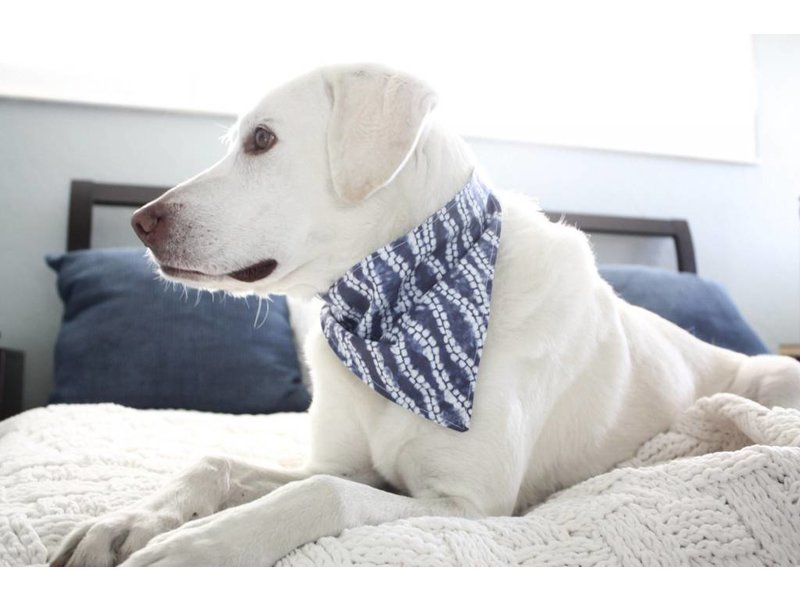 The Modern Mutt Shibori Pet Bandana