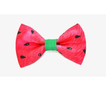 The Modern Mutt Bow-Tie, Watermelon