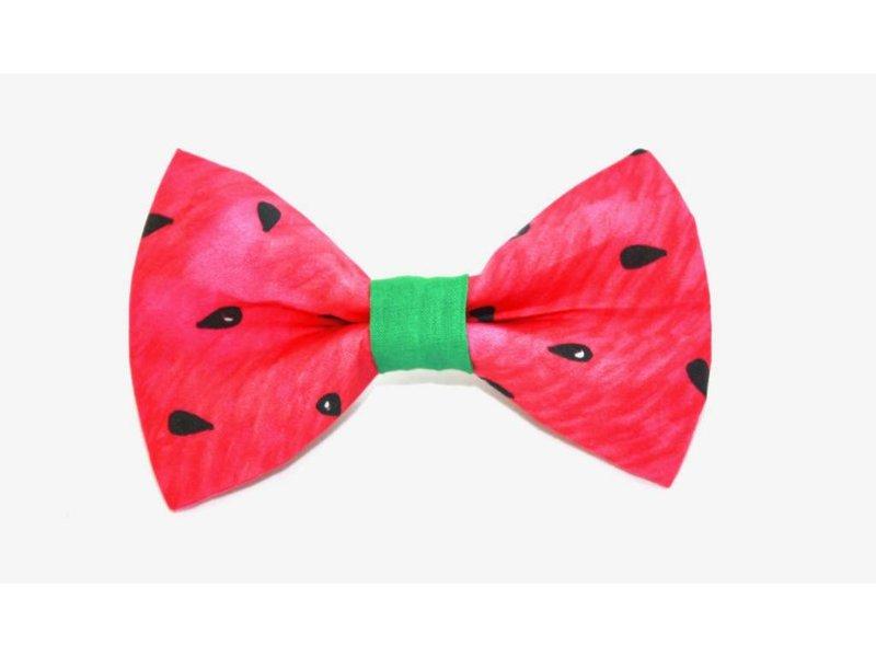 The Modern Mutt Bow-Tie, Watermelon