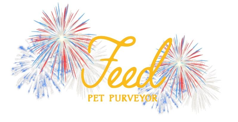 Celebrating the 4th with your Pet