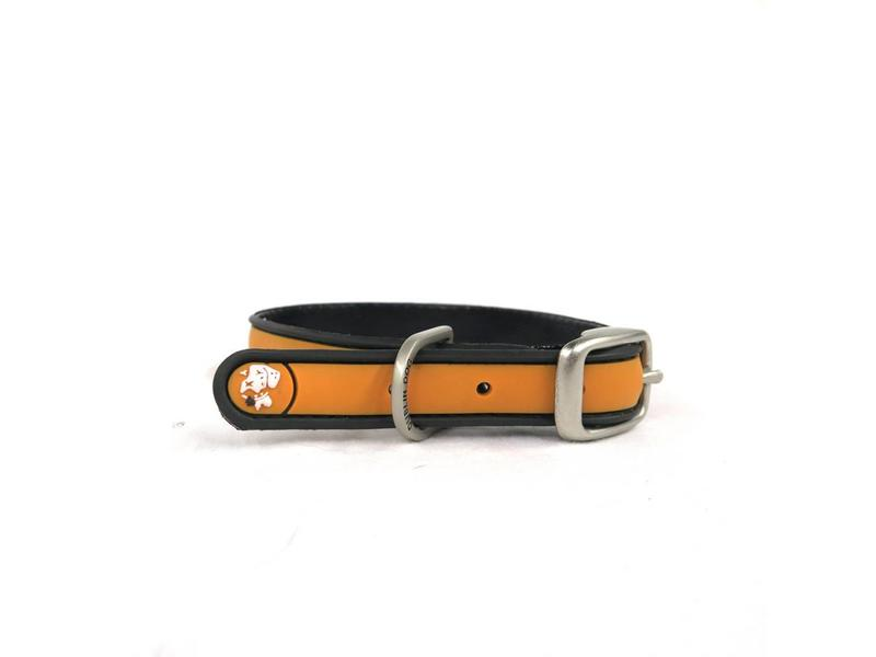 Dublin Dog Orange Waterproof Collar