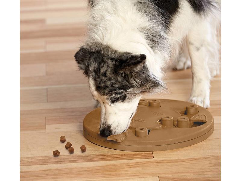 Nina Ottosson Dog Worker Puzzle