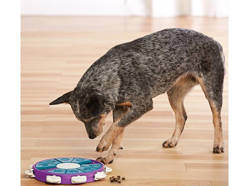 Nina Ottosson Twister Dog Puzzle