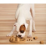 Nina Ottosson Dog Smart Puzzle, Composite