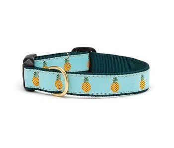 Up Country Pineapple Dog Collar