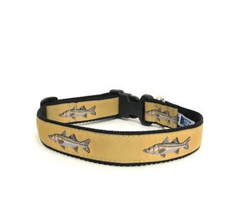 Preston Snook Collar