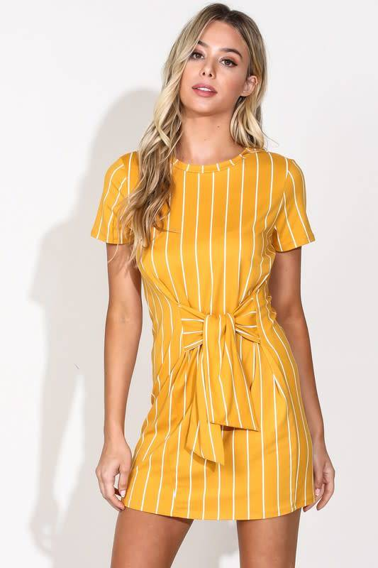 Blue Blush Reformation Stripe Dress