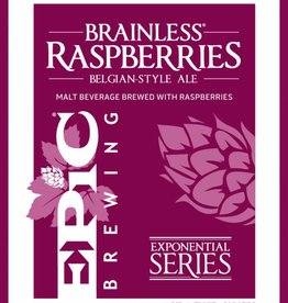 Epic Brainless Raspberries Belgian Style Ale 22oz Bottle
