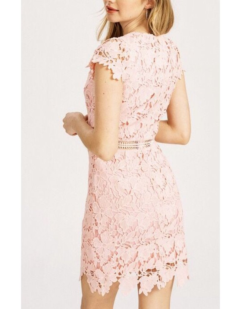 Blush Lace Fitted Dress with Peek Through Slits