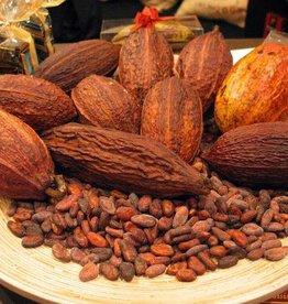 Cocoa Bean Hangsen e-Liquid