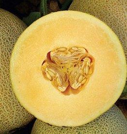 Hangsen Melon Hangsen e-Liquid