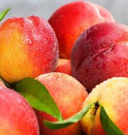 Hangsen Peach Hangsen e-Liquid