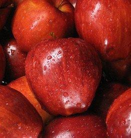 Hangsen Red Delicious Apple Hangsen e-Liquid