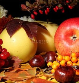 HS Fruits Hangsen e-Liquid