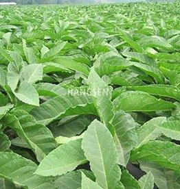 HS Tobacco Hangsen e-Liquid