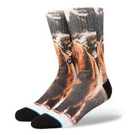 Stance Stance Leos Socks