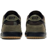 Nike Nike SB Zoom Dunk Low Pro Shoes