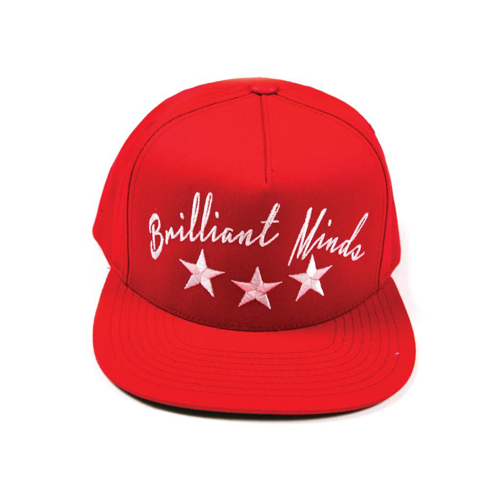 Hidden Hype Brilliant Minds Snapback