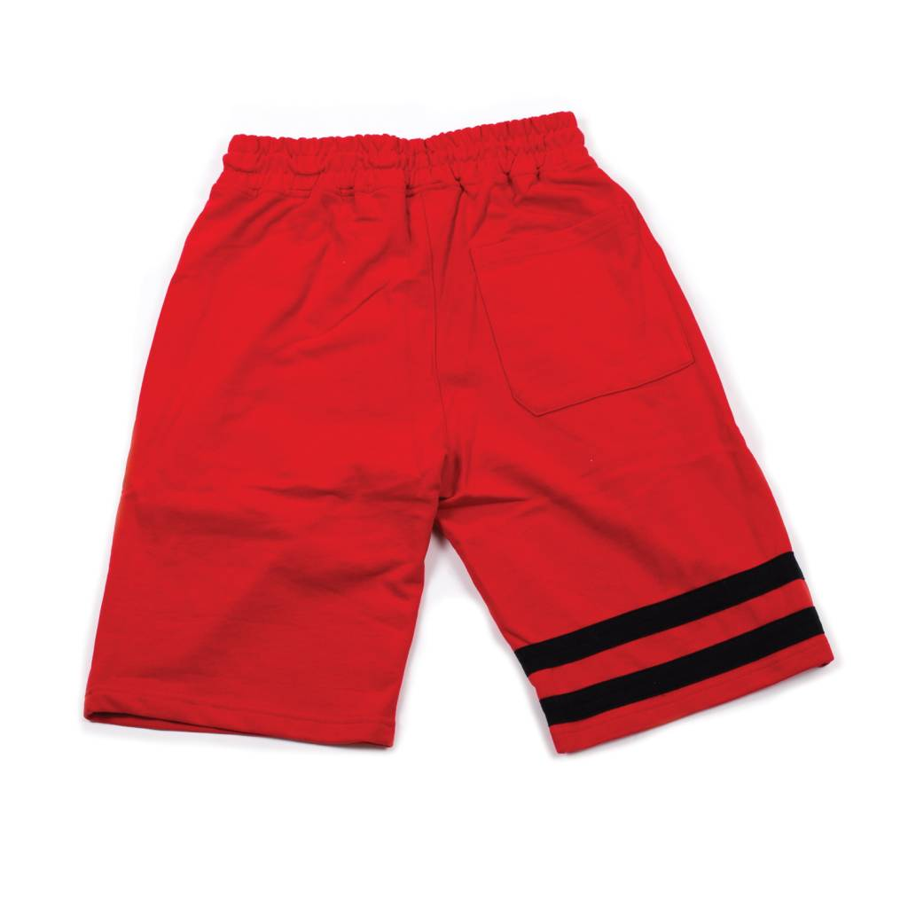 Hidden Hype Brilliant Minds Shorts