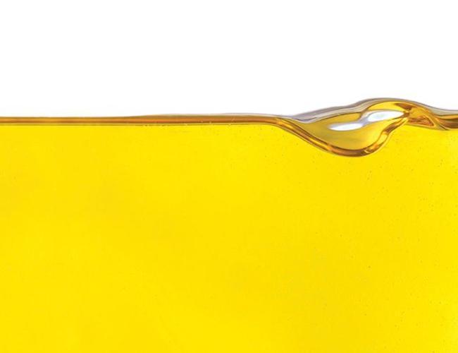 Sous les oliviers Extra Virgin Olive Oil - Italian Carolea 500ml