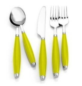 5 pc Flatware Lemongrass