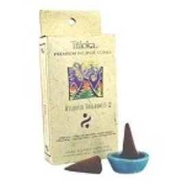 TRILOKA CONE INCENSE ASSORTED 2