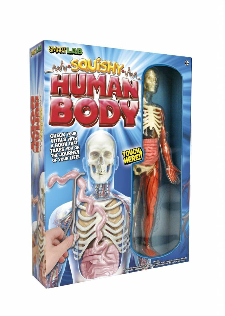 SmartLab Toys Squishy Human Body - Minds Alive! Toys Crafts Books
