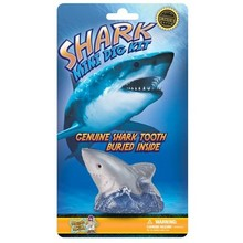 Dr. Cool Dig Kit Mini Shark Tooth