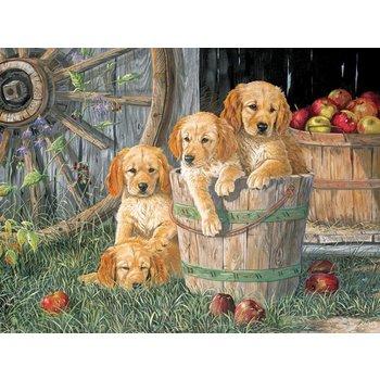 Cobble Hill Puzzles Cobble Hill Family Puzzle 400pc Puppy Pail