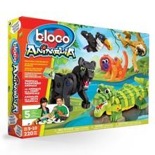 Bloco Bloco Animalia Tropical Forest Animals
