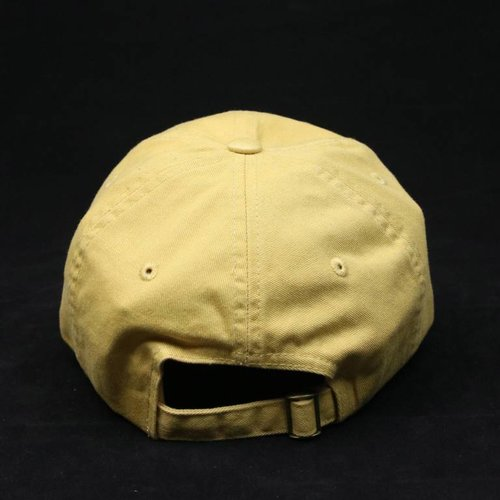 THE EDITION TE STAMP DAD HAT MUSTARD