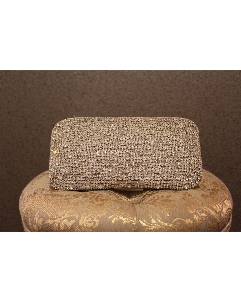 Silver Jewelled Purse