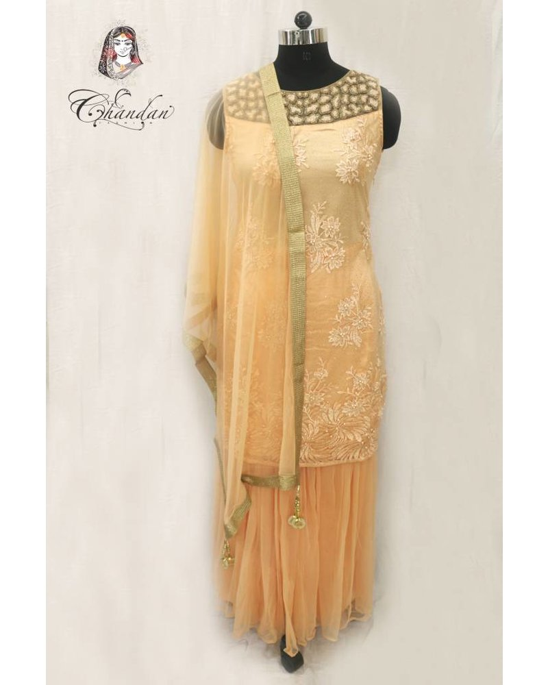 Light Orange Suit with Pearl Detailing and Matching Net Sharara