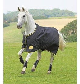 Shires Tempest Original Black/Gold 100G