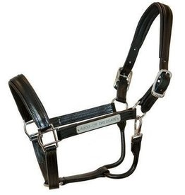 Walsh Company Inc. Walsh Dressage Halter