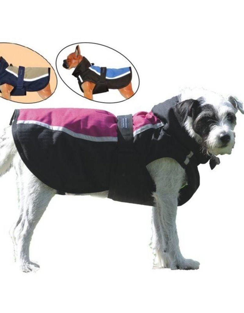 Century Dog Blanket