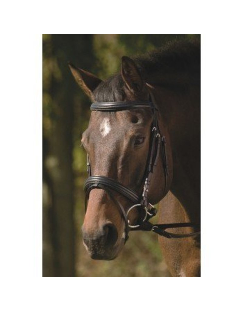 HDR Monocrown Dressage Bridle