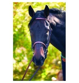 HDR Advantage Fancy Stitched Bridle w Laced Reins