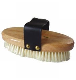 Econo Soft Body Brush