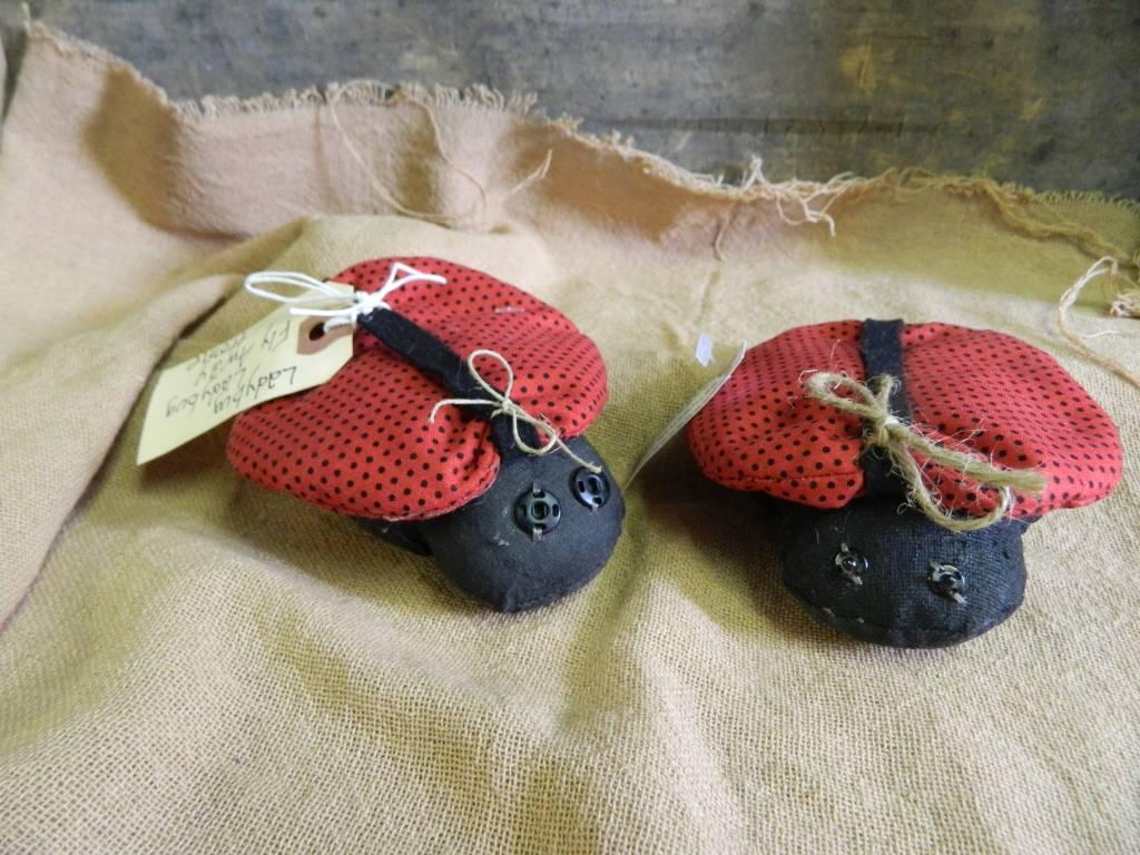 Homemade Ladybug Ladybug