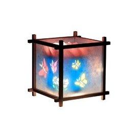 Magic Lamp Magic Lamp, Butterflies