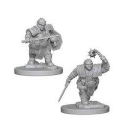 WizK!ds D&D Miniatures (2) Dwarf Fighter Female