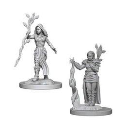 WizK!ds D&D Miniatures (2) Human Druid Female