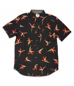 VANS TROUBLE IN PARADISE BUTTONDOWN SHIRT