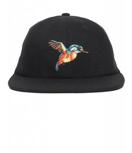 ACAPULCO GOLD HUMMINGBIRD 6 PANEL