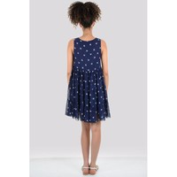 Molly Bracken Rose Cone Dress