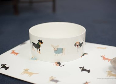For the pet-obsesssed