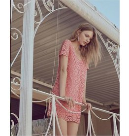 bb dakota rene dress