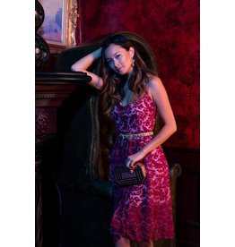 bb dakota candler dress