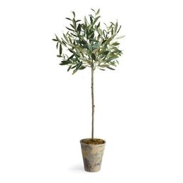 Napa Home & Garden Olive Tree Potted 30""